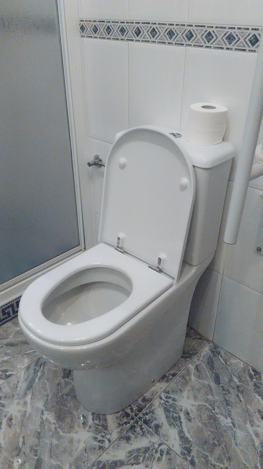 instalacion de water movilidad reducidad torrevieja orihuela